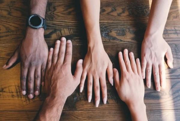 What Divides Us – What Unites Us